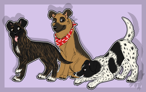 Trio of Mutts by lone-wolf-666