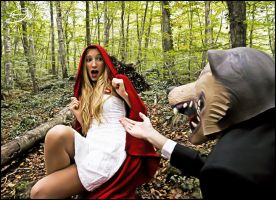 Little Red Riding Hood 3 by SilviasArt
