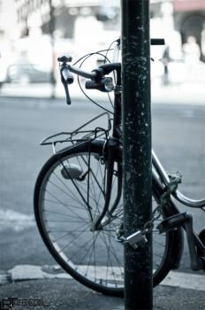 Bicycle in Roma by vortex46