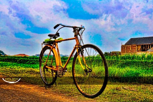 Yellow old bike's by FaizalRahman