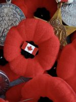 Remembrance Day by Frankenteddy