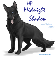 FP Comm - Midnight Shadow by shelzie
