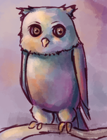 Owl by Vogelspinne
