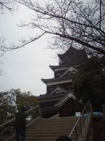 Hiroshima Castle by PlaidRed
