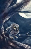 Moonlit Owl by mikadove