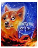 Doge And Grumpy Cat by RiverSpirit456