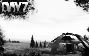 DayZ Helicopter Crash Site Wallpaper - 1920x1200 by Snecks