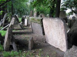the old jewish cemetery 14 by Meltys-stock