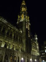 Brussels By Night by Ni3nk3