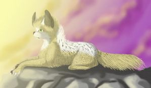 Basking in the Sunrise by WolfStarr7