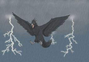 Thunder bird by Jayoen