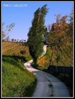 MONTEROBERTO (AN)-A WHITE ROAD IN THE COUNTRYSIDE by MarcoLorenzetti