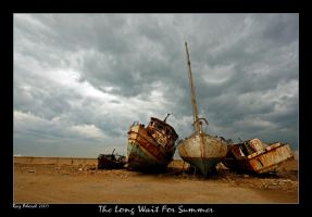 The Long Wait For Summer by Aderet