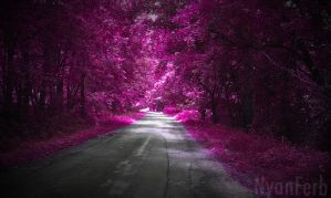 Pink Forest by NyanFerb