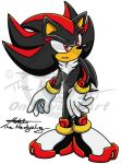 Shadow The Hedgehog by Metal-CosxArt