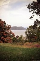 A Peek at the Hudson by WickedOwl514