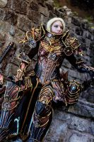 Diablo III Reaper of Souls Crusader Female by cyehra