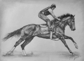 Rachel Alexandra drawing by rainyrose23