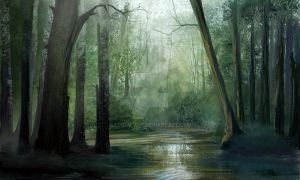 Forest by Lorem-art