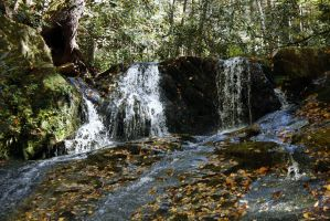 Thorp's Trail -6- by cadillacphunque