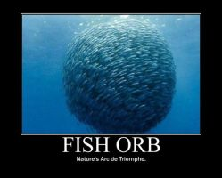 Poster - FISH ORB by E-n-S