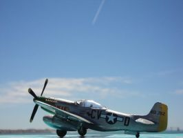 Finally back to work x3 P-51D by DingoPatagonico