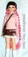 Pink Messenger Set by Pandoras-Toy-Box