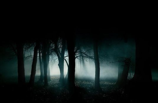 Black Forest by thelordbaphomet