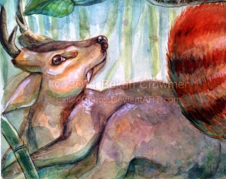 Palling Around- Muntjac closeup by ExiledChaos