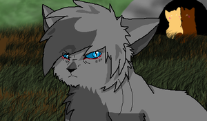 Ashfur disapproves animation by cutecat54546