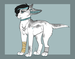 Canine OTA (Open) by HP-Adopts