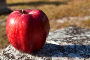 Apple on a Gravestone by TomFawls