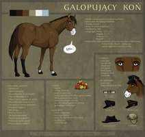 Galloping Horse (Flawless) :: ref sheet v.4 by RivenPine