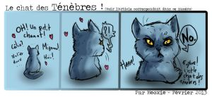 .: The cat of DARKNEEESS... by Meoxie