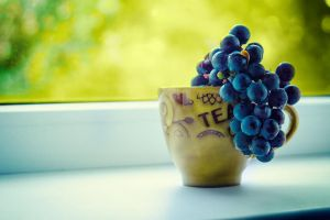 Grapes by timona79