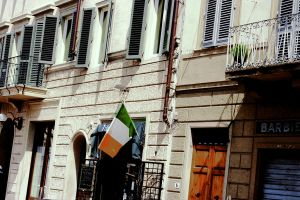 Irish Flag by stelladelmare