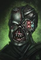 Corrupted Borg by Eckko