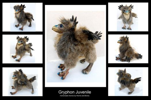 Juvenile Gryphon Doll by WormsandBones
