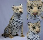 Jasper the African Leopard by LisaAP