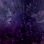 Purple Rain by ShinyWish