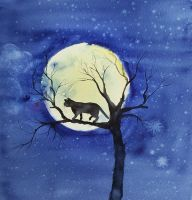 Cats moon by stokrotas