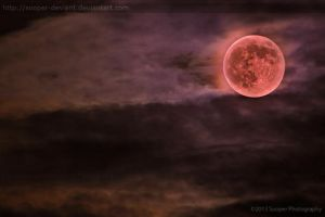 Supermoon Rising 0955P by Sooper-Deviant