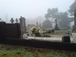 Foggy in the cemetery 21 by rudeturk