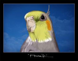 this is frank 2 by dubtastic