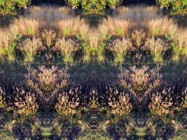Symmetrical Addington Hills Heath Stereo by aegiandyad