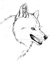 Wolf happy face by PandorasWolf