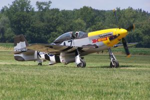 "P-51 ""Never Miss"" Taxi by zammariangod"