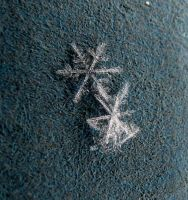 two snowflakes pic 4 by Nipntuck3