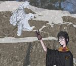 Harry Potter -- 3O DDC by Naoki17