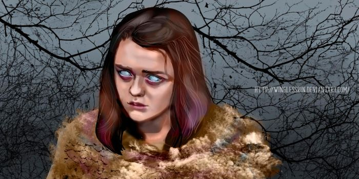 Arya Stark by WinglessRin